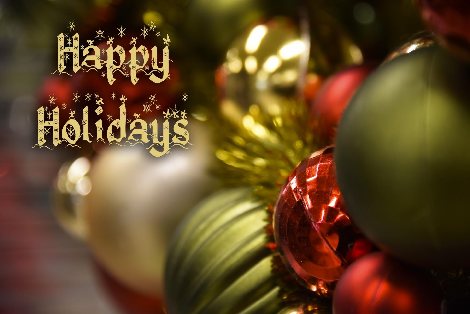 Joyeuses fêtes de fin d'année…et reprise des cours en 2018!
